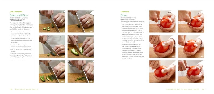 Mastering Knife Skills Stewart Tabori and Chang How To